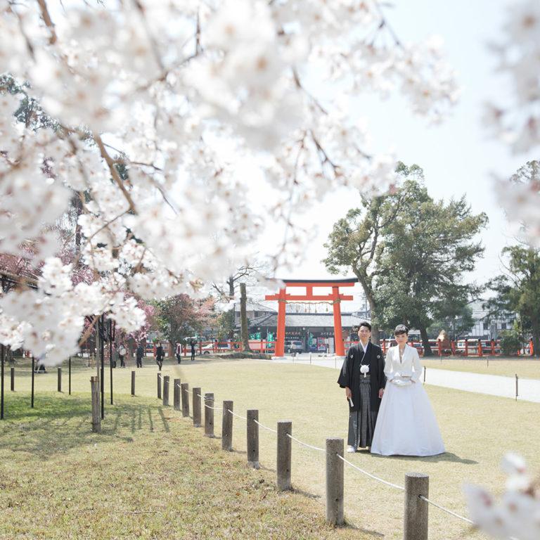 上賀茂神社-春