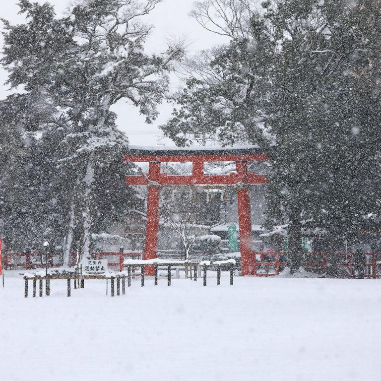 上賀茂神社-冬