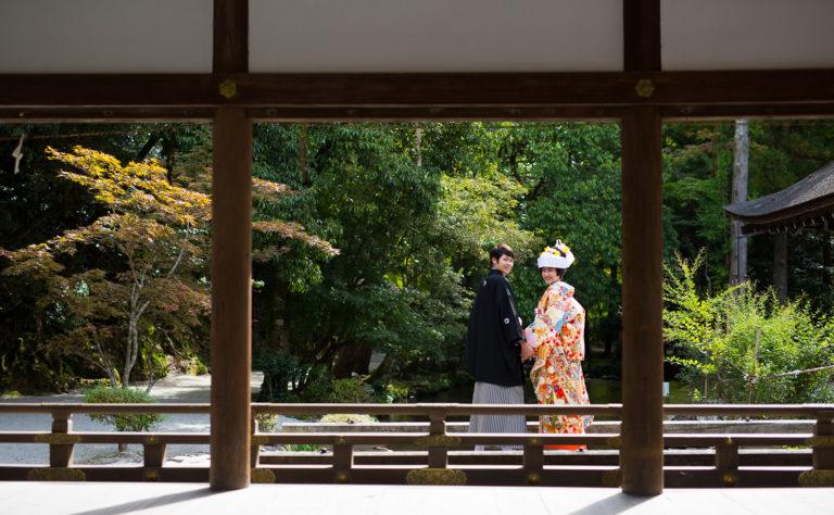 上賀茂神社-夏